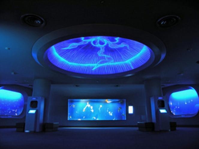 クラゲファンタジーホール
