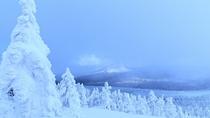 ■蔵王の樹氷原