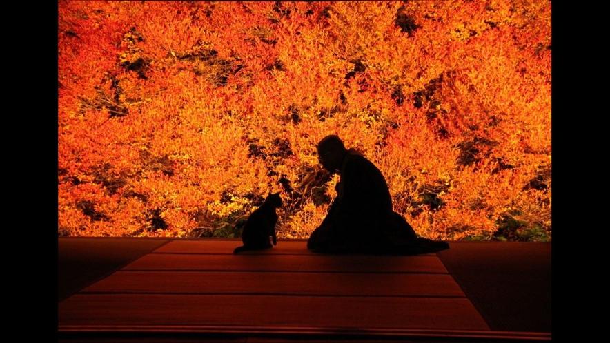 【安国寺/どうだんつつじ紅葉】当館より車約90分 写真提供:但東シルクロード観光協会