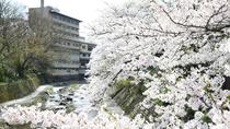 外観(春/4月上旬頃)※気候によっては見頃時期が前後します