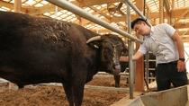 【地元銘柄・但馬牛】契約牧場さんから品質の高い上質な但馬牛を仕入れています