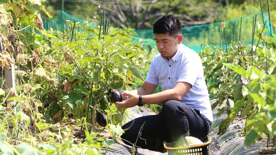 【新鮮な野菜】週2~3回料理長が契約農家さんへ直接赴き食材を厳選