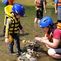 【アクティビティ】夏休み限定「ファミリー川下り体験」小さなお子様が楽しめる川遊びメニューです。