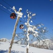 【ゲレンデ】青空とゴンドラと樹氷