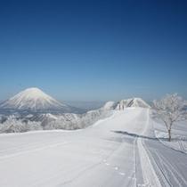 【ゲレンデ】コースの奥に見える羊蹄山。景観を楽しみながらがルスツのスキー場の楽しみ方のひとつ。