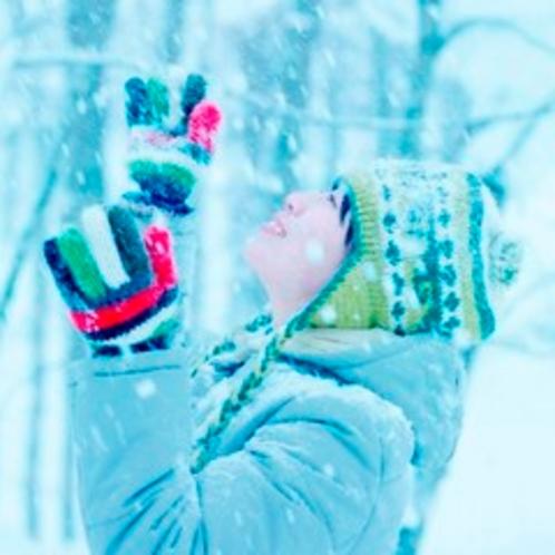 【滞在】空から舞い降りる雪の結晶。あなたが見る結晶はどんな形をしてますか。