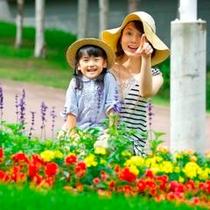 【花のある風景】ル・ノンノ