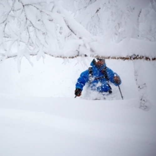 【ゲレンデ】新雪降り積もるオフピステ(非圧雪)ゾーンは年に数回このボリューム!