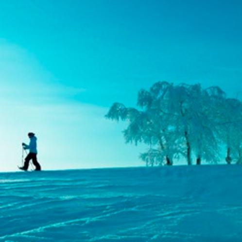 【アクティビティ】クロスカントリスキー&スノーシュー。ふわふわの雪を踏む。真っ白な雪原でまるで雲の上