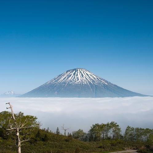 【羊蹄パノラマテラス】からの風景。雲海と羊蹄山 ※雲海は気象条件が揃うことで発生する現象です。