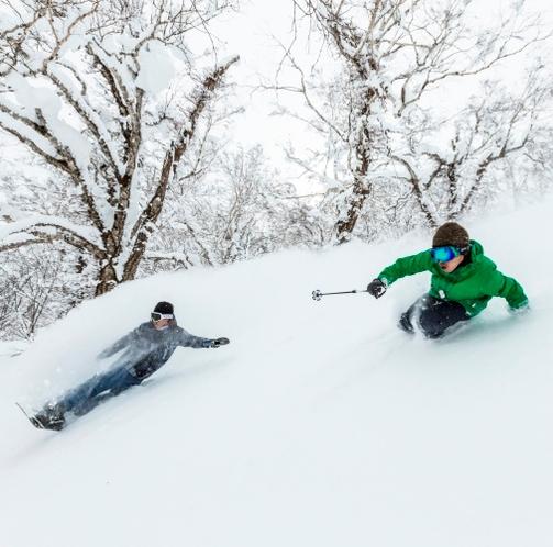 【ゲレンデ】スキーイメージ