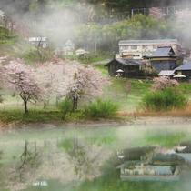 *【JR只見線】春 只見線沿線は四季折々の景色が楽しめます。