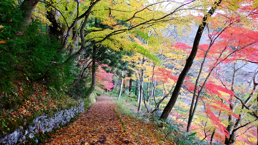 紅葉シーズンの周辺観光