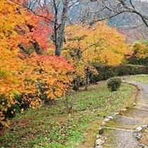 群芳園 (紅葉の階段)