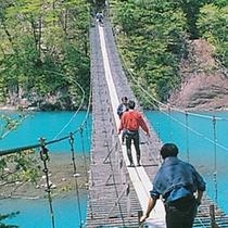 ■ トリップアドバイザーで「死ぬまでに渡りたい世界の徒歩吊り橋10」にも選ばれました。