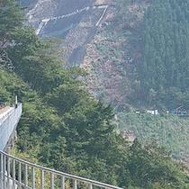 ■ 唯一のアプト式(歯車を持つ機関車で急な坂道を登る)を使用し、急勾配を登り降りしています。