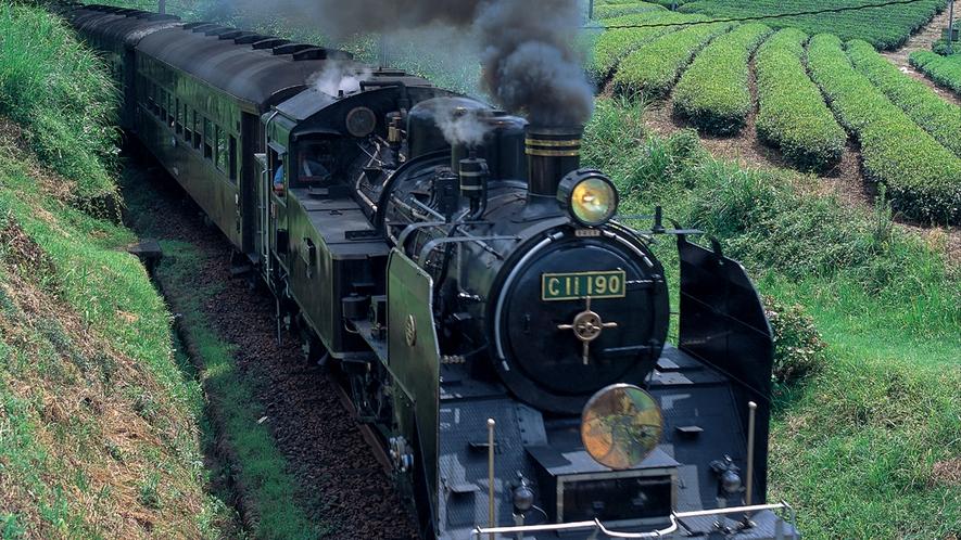 【大井川鐵道のSL】力強く走る姿、山々に響き渡る汽笛と煙