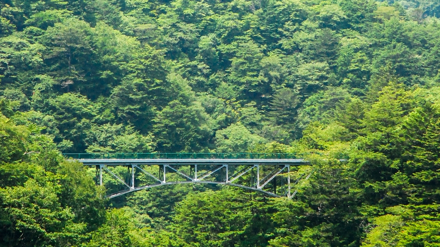 【寸又峡の[夢のつり橋]】