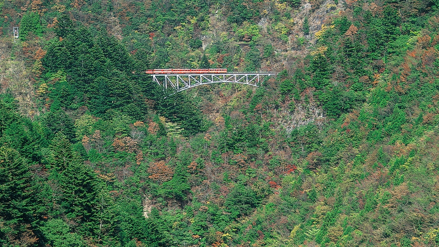 【南アルプスあぷとライン】大井川鉄道井川線の千頭駅から井川駅までの25.5kmを結ぶトロッコ列車