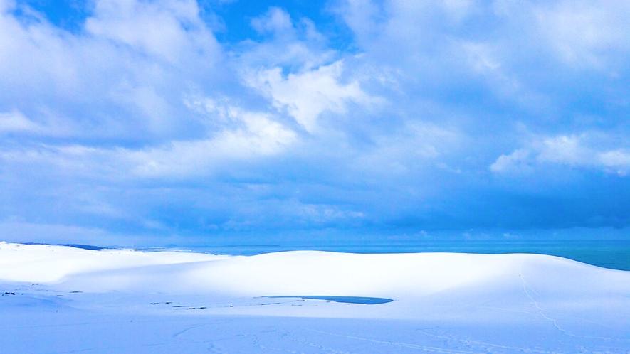 【鳥取砂丘】雪景色