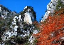 【昇仙峡】渓谷美が人気の観光スポット≪昇仙峡≫へは、ホテルから車で約45分