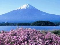 【世界文化遺産_富士山】富士五湖方面へはホテルから車で約35分