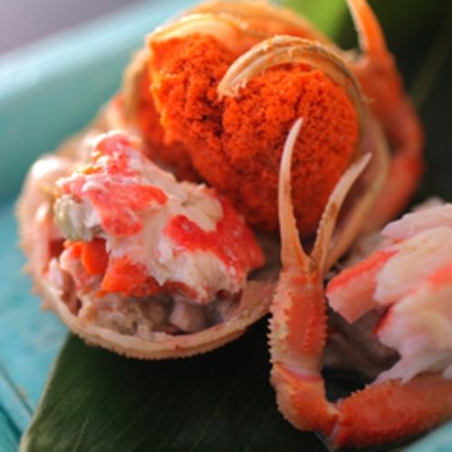 【冬の美味】濃厚な味わいの内子が特徴の香箱蟹(本津合蟹)の美味しさを味わえる冬の逸品。
