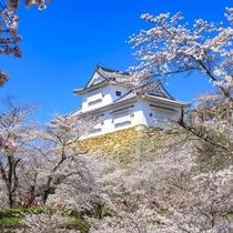鶴山公園(津山市)