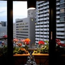 ツインルームの窓