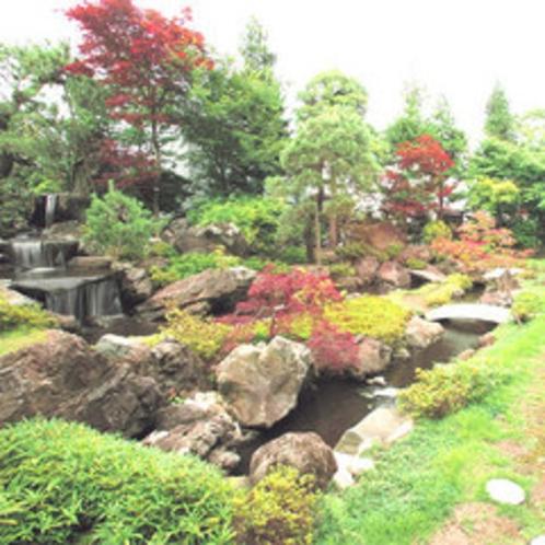 季節を感じる日本庭園の眺め