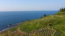 世界農業遺産にも認定された「千枚田」。日本の原風景でホッとひといき
