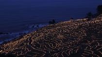 1万個以上のイルミネーションが千枚田を照らすあぜのきらめき散策道