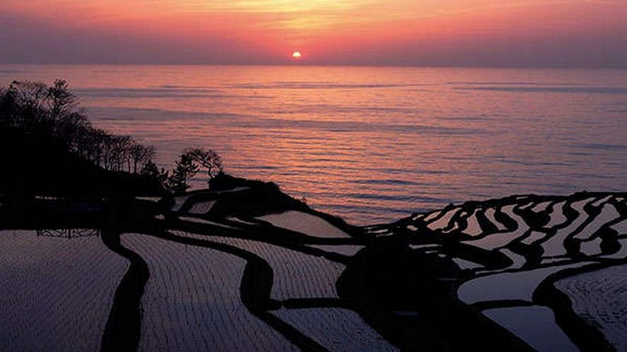 棚田を照らす夕陽