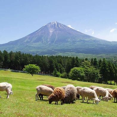【素泊プラン】東名富士ICから車1分、ご家族&グループ旅行に◎ 駐車場&Wi−Fi無料<朝食なし>