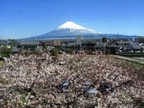 2010/03/30富士山