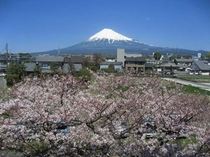 2009/04/02富士山