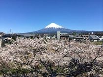 2014/04/01 富士山