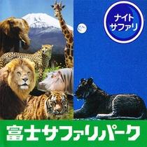 ■富士サファリパーク(車で40分) ライオンやキリンが大迫力!