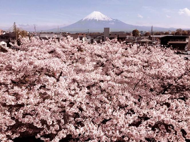 2016/04/05富士山