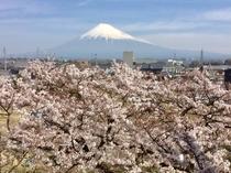 2018/03/27富士山
