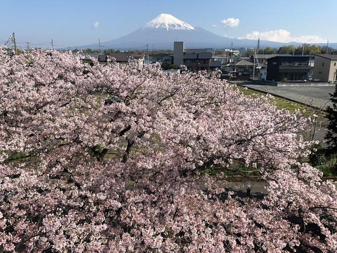 2020/04/05 今日の富士山