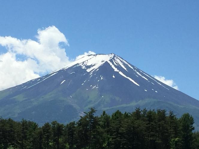 敷地内から見える富士山