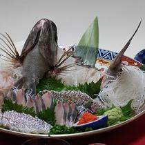 鯛の刺身(3人前)