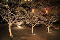 ダイニングの窓から雪を楽しんでください。