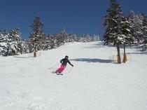 スキーは楽し!