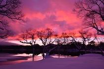 冬の朝の小野川湖