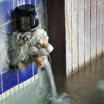 *男女別内湯/内湯も露天風呂も100%源泉かけ流し!江戸時代から湧き出る源泉です。
