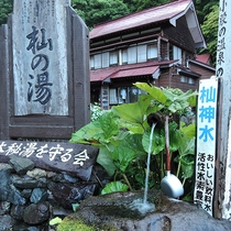 *施設周辺「杣神水」/当館目の前に湧き出る、活性水素が豊富な森の湧き水です。