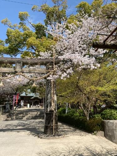 【大和町】川上峡  與止日女(よどひめ)神社