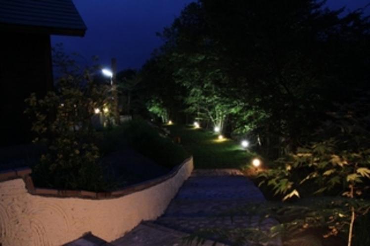Tapa夜景